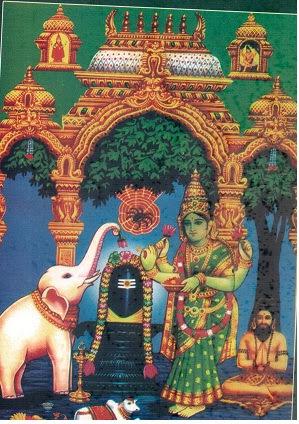 சிலந்தி அரசனான வரலாறு